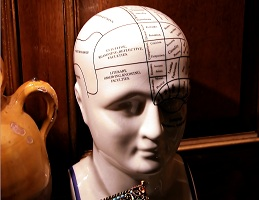 Don't Worry – Your Brain Is Big Enough