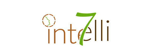 Intelli7 Logo