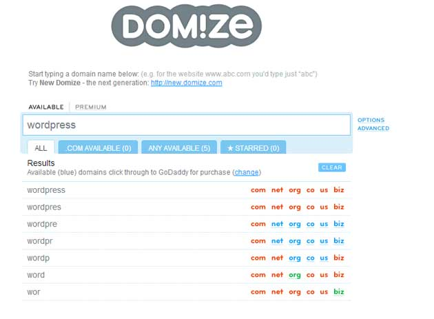 generate a domain name