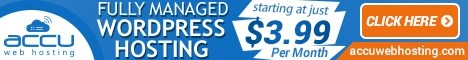 Fully Managed WordPress Hosting on SSD Drive