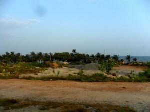 Labardi Beach (WEB)