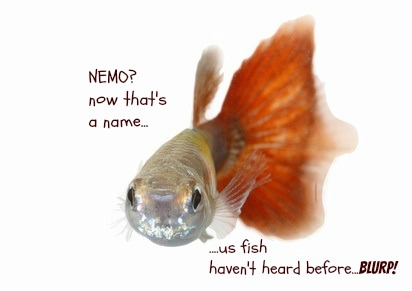 S Fish Names - The Best Fish 2018