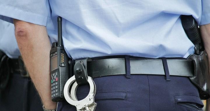 RASI 2019-Criminalidade violenta e grave-ACEGIS