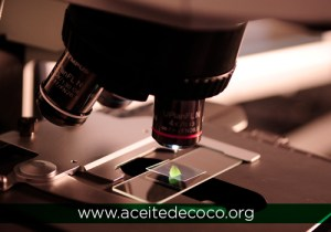 De qué está compuesto el Aceite de Coco