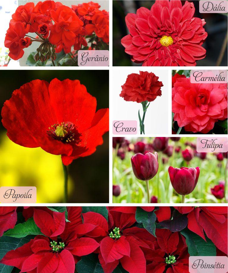 Flores Vermelhas para Decoração de Casamento