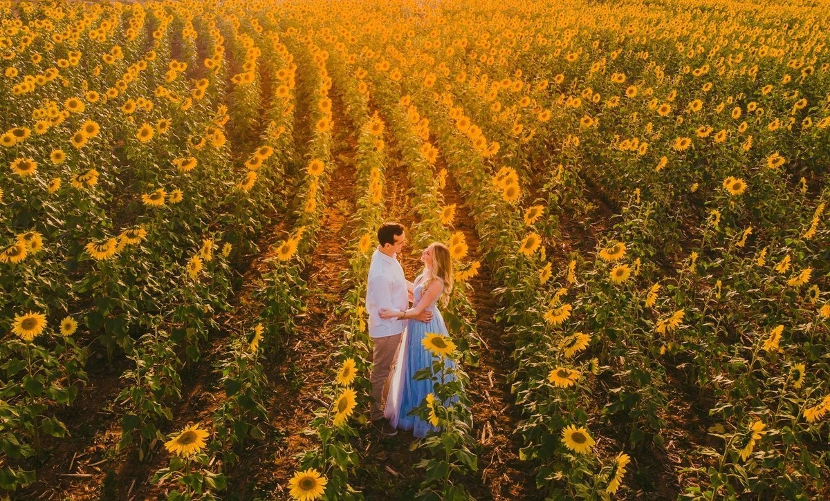 Ensaio pre wedding com girassol - Foto: Luiz Mazinho