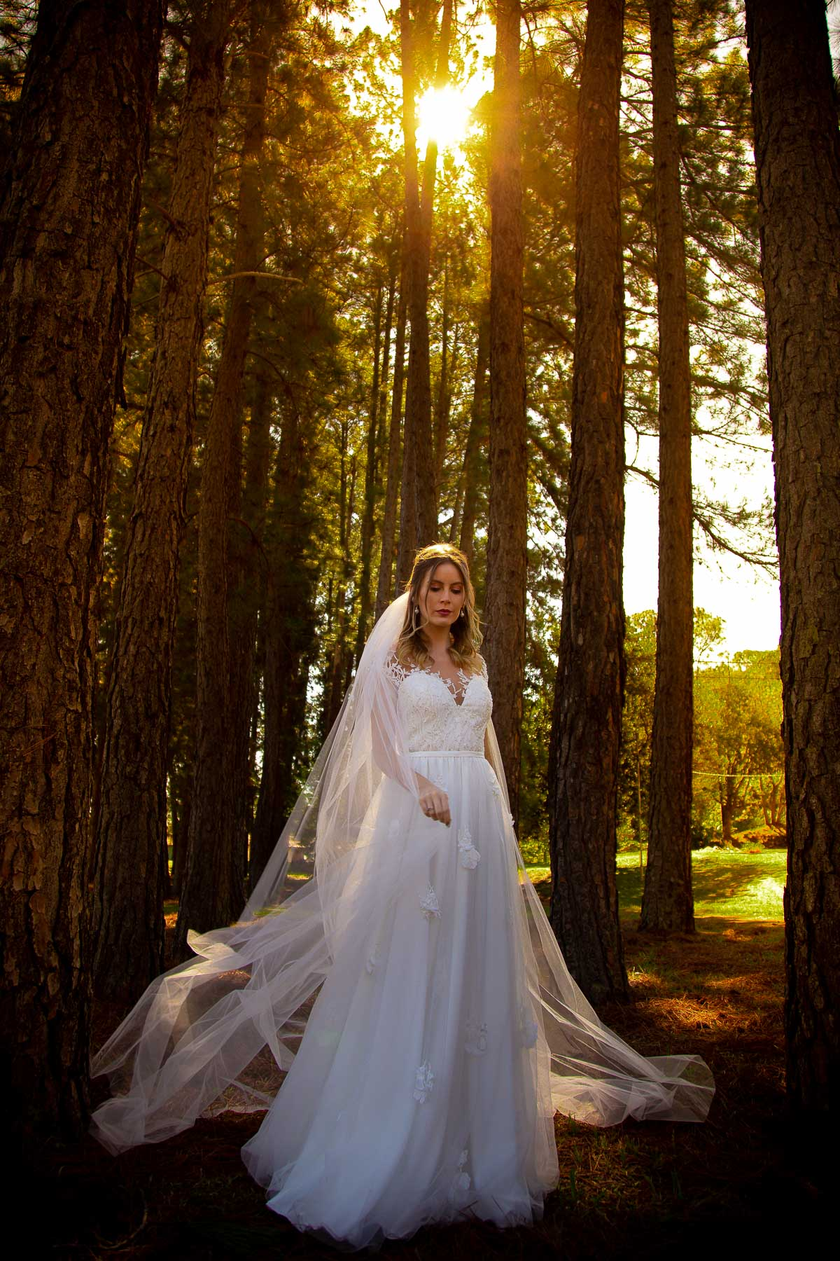 editorial casar no campo