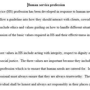 human service profession