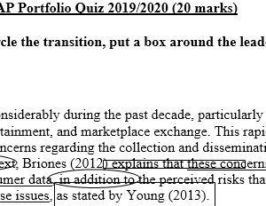 portfolio quiz