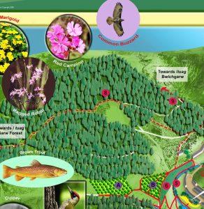 wildlife interpretation