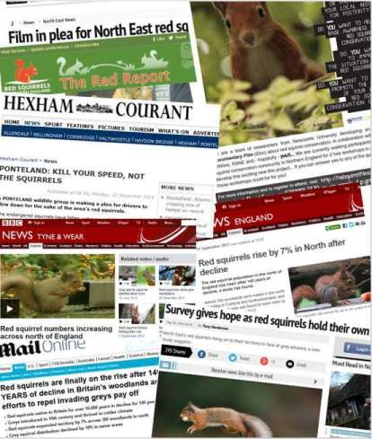 Red Squirrel Monitoring Surveys in the News