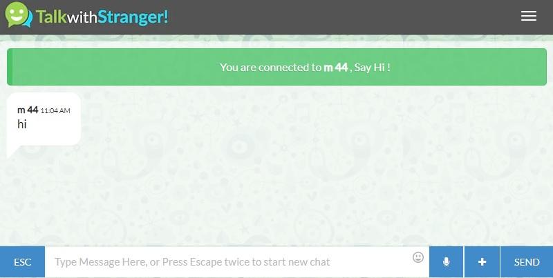 talkwithstranger interface