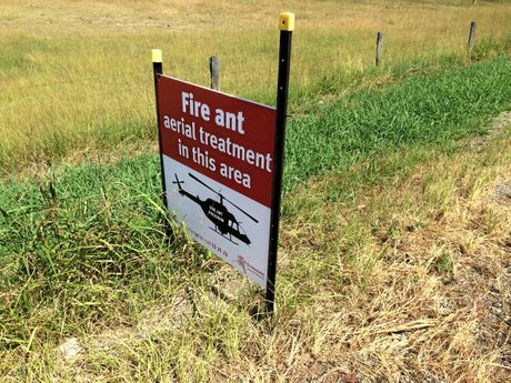 BIG EFFORT: A $411 eradication fire ant eradication program is currently being implemented, working from west to east. This sign was found at Warrill View earlier this year.
