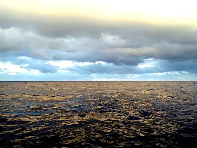 Mercurial waters