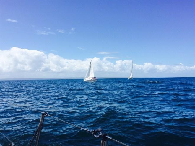 Dominican Republic, Samana, Puerto Bahia, regatta, sailing, abordo, sailboat