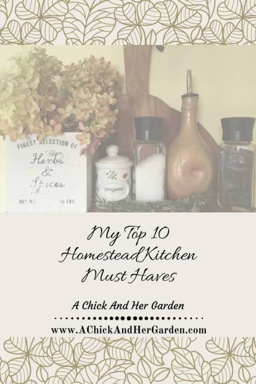 my-top-10-homestead-kitchen-must-haves-pin
