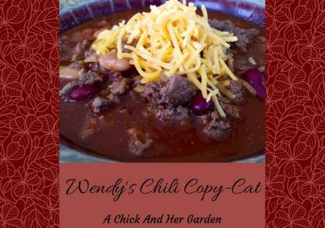 Wendy's Chili Copy-Cat