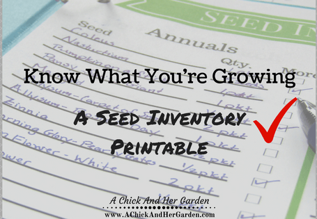 This free printable was so helpful in organizing my seeds this year!