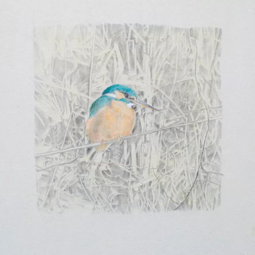Kingfisher II