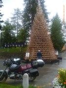 Schlittenbaum bei Tag