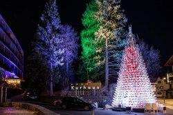 Weihnachtsbaum Schlitten bei Nacht