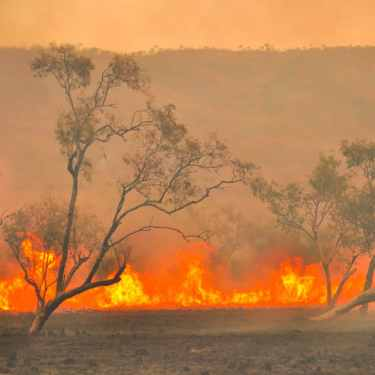 Heightened bushfire risk and underinsurance: a major risk to WA farmers