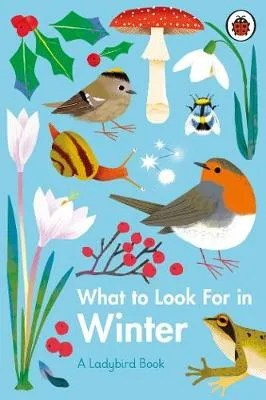What to Look For in Winter – A Ladybird Book by Elizabeth Jenner ill. Natasha Durley