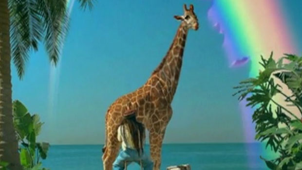 Skittles – Giraffe