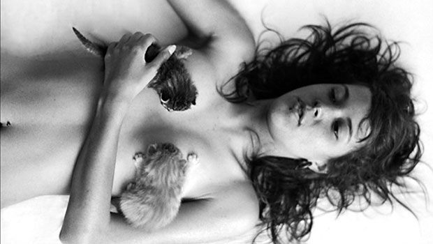 Peitos e gatos – NSFW (+18)