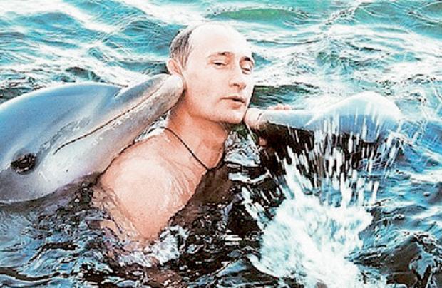 putin-dolphins