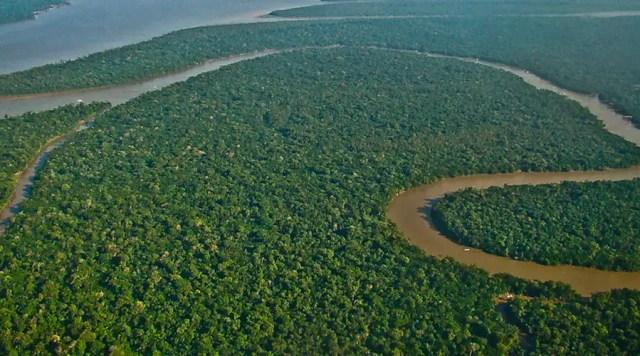 In dem jetzt frei gegebenen Amazonasgebiet in Brasilien soll vor allem Gold unter der Erde liegen, aber auch große Eisenvorräte, Kupfer und andere Erze