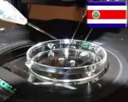 Costa Rica rechaza ley de fecundación in vitro