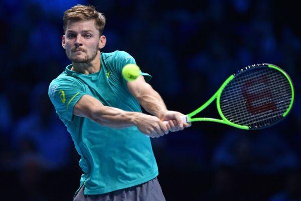 ATP Finals: Goffin defeats Federer faces Dimitrov in final