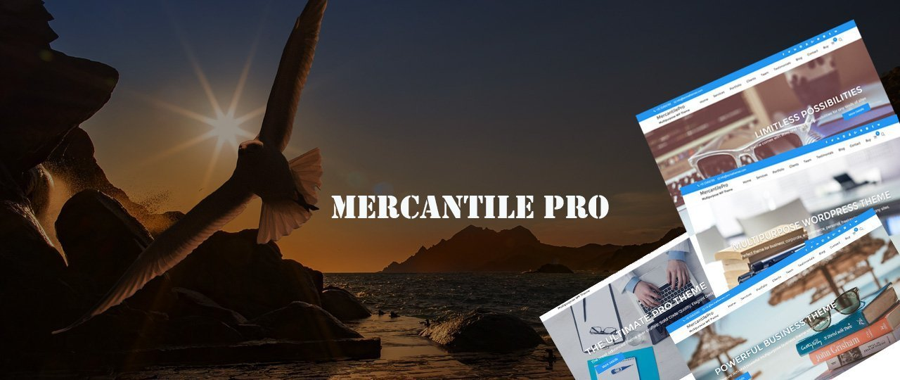 MercantilePro WordPress Premium Theme