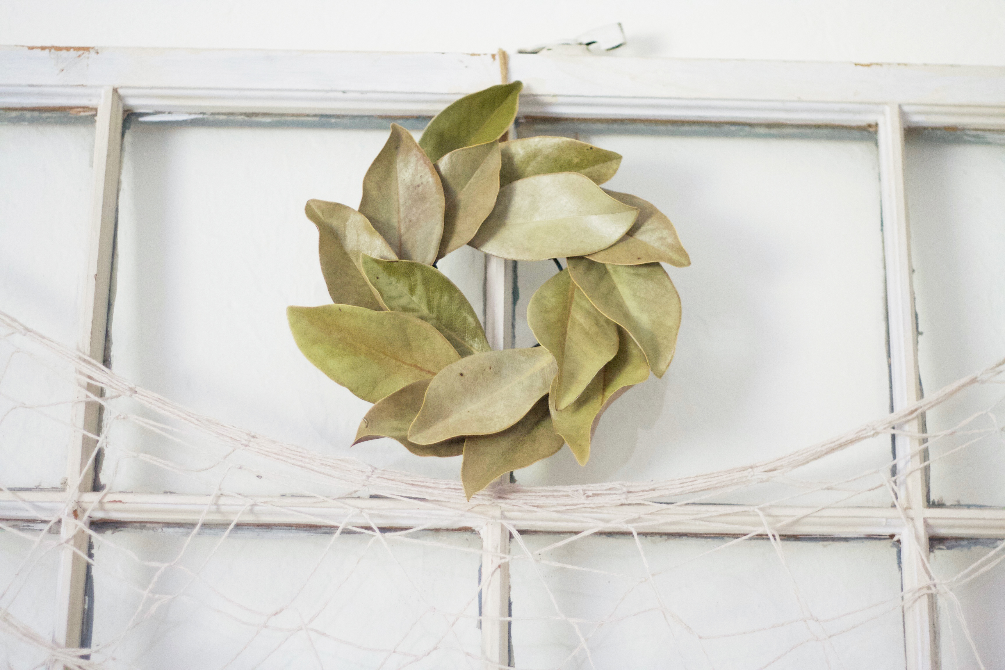 DIY: How I Made My Own Real Magnolia Wreath
