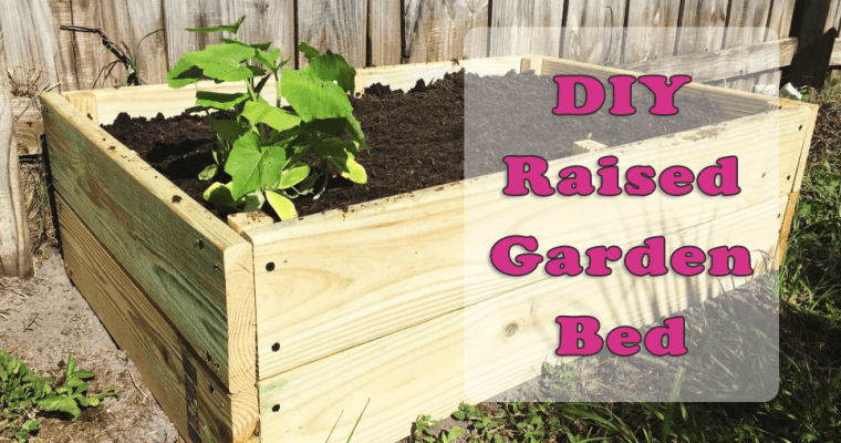 DIY Sturdy Raised Garden Bed For Around $20