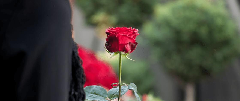 Sobre la muerte de mi madre