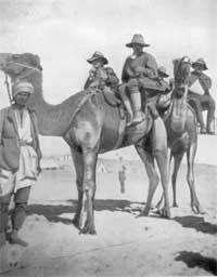 Wounded New Zealanders sitting on camel ambulances, the dreaded 'cacolets'. Many wounded preferred to walk until they dropped.