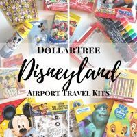 Airport Travel Kits For Disneyland from The DollarTree