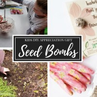 How to Make Seed Bombs | Kids DIY