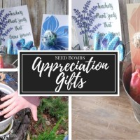 How to Make Seed Bomb Appreciation Gifts