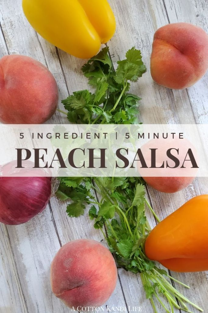 The World's Easiest Peach Salsa Recipe with only 5 Ingredients! After u-Pick Peach Picking in Oregon we had to find a good Summer Recipe with Peaches. This Peach Salsa Recipe is Fast & Easy and Kid Friendly. It's also AMAZING on Tacos!