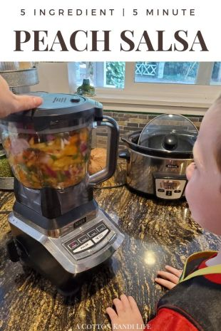 Kids in the Kitchen Recipes: The World's Easiest Peach Salsa Recipe with only 5 Ingredients! After u-Pick Peach Picking in Oregon we had to find a good Summer Recipe with Peaches. This Peach Salsa Recipe is Fast & Easy and Kid Friendly. It's also AMAZING on Tacos!