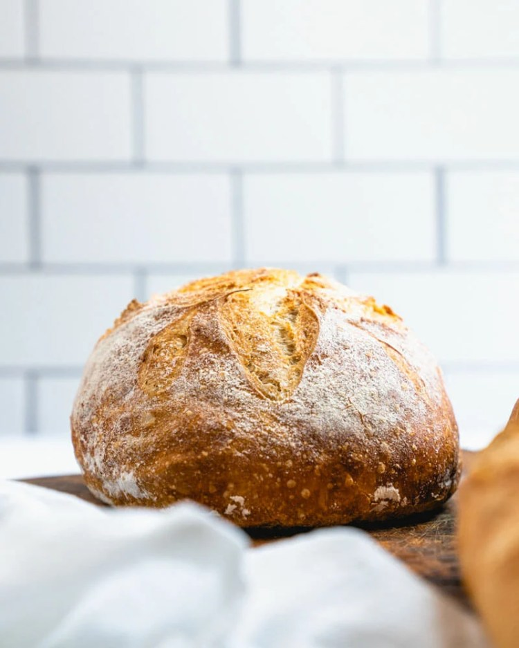 Best no knead bread