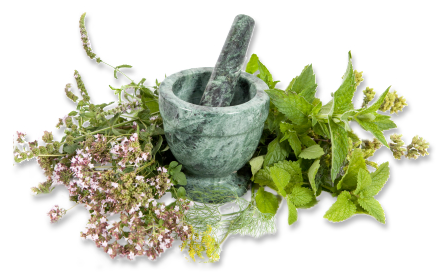 Image result for Medicinal herbs
