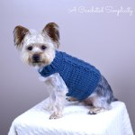 Free Crochet Pattern: Cabled Dog Sweater by A Crocheted Simplicity