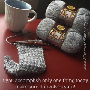 Test Your Crochet Knowledge with this interactive crochet quiz by A Crocheted Simplicity