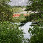 Bow Valley Campground June 2014 031
