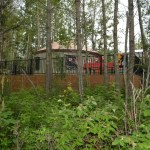 Comfort Camping Yurts at Pigeon Lake PP