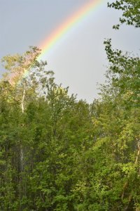 rainbow-at-pike-lake-provincial-park
